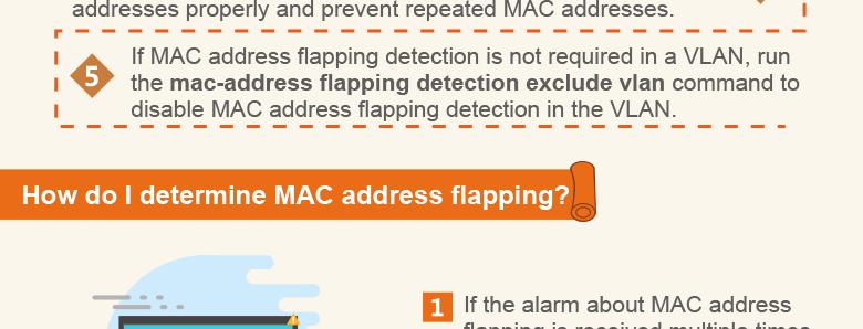 MAC flapping