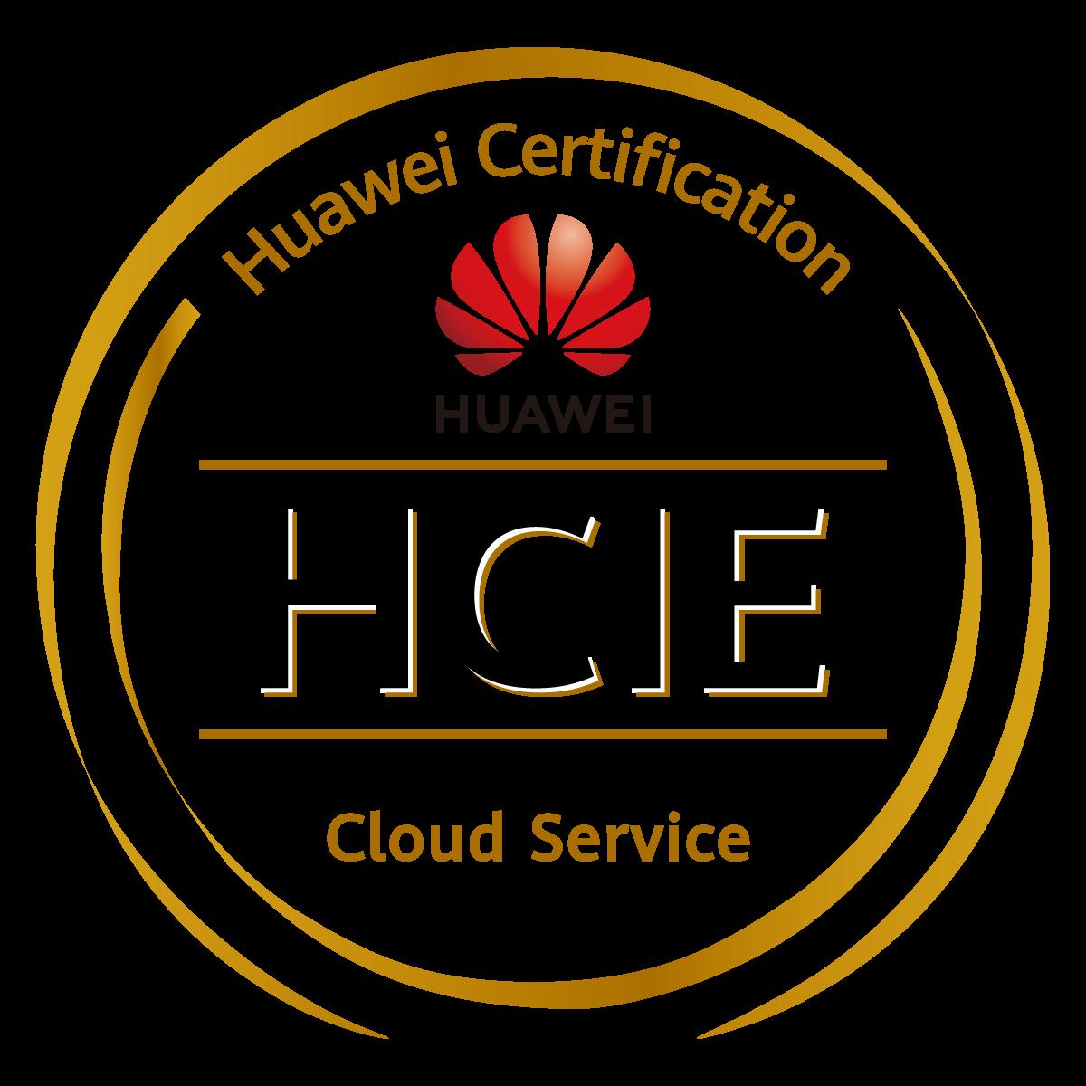 HCIE - 副本